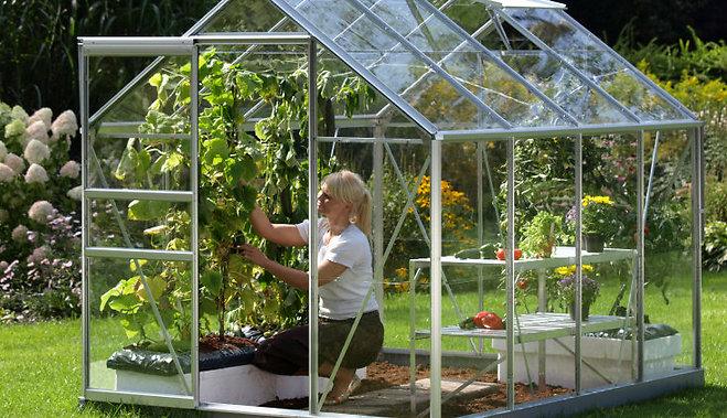 sieviete dārza siltumnīcā